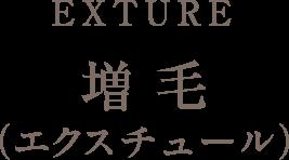 EXTURE 増毛エクスチュール